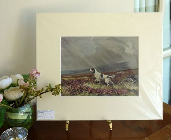 English Setters 1950's print by Ward Binks - Set WB1